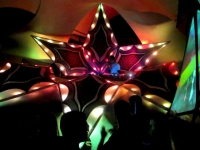 Geomatrix Design LED Installation -Decor Floathing Bush 002